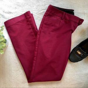 Express Columnist Dress Pants